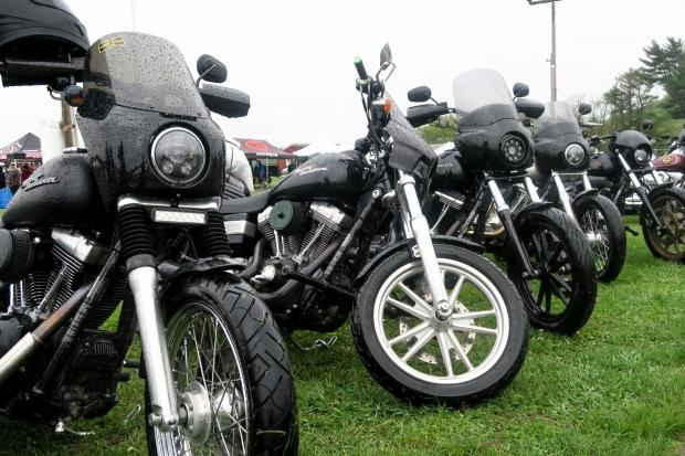 Hotbike FXR Dyna Show_-4
